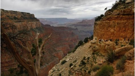 U.S National Parks Lose Protection?
