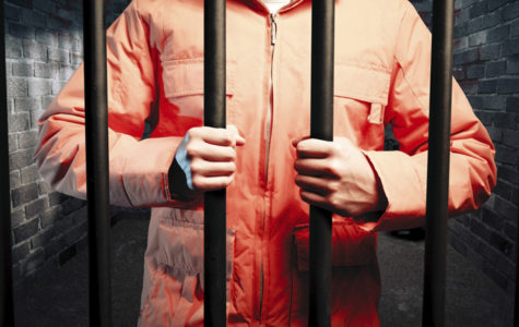 Results of the Wrongly Convicted