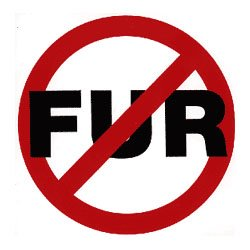 Los Angeles Becoming Largest City to Ban Fur?