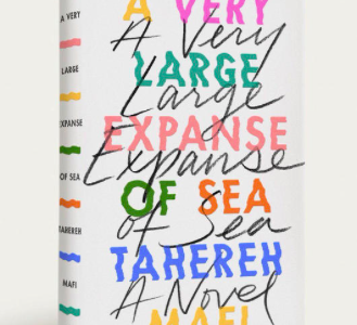 Book Review: A Very Large Expanse of Sea
