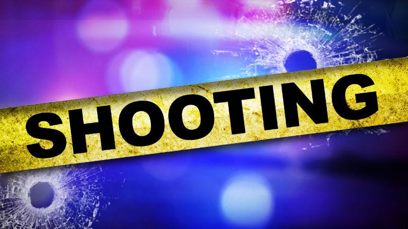 Harada Neighborhood Shooting investigation