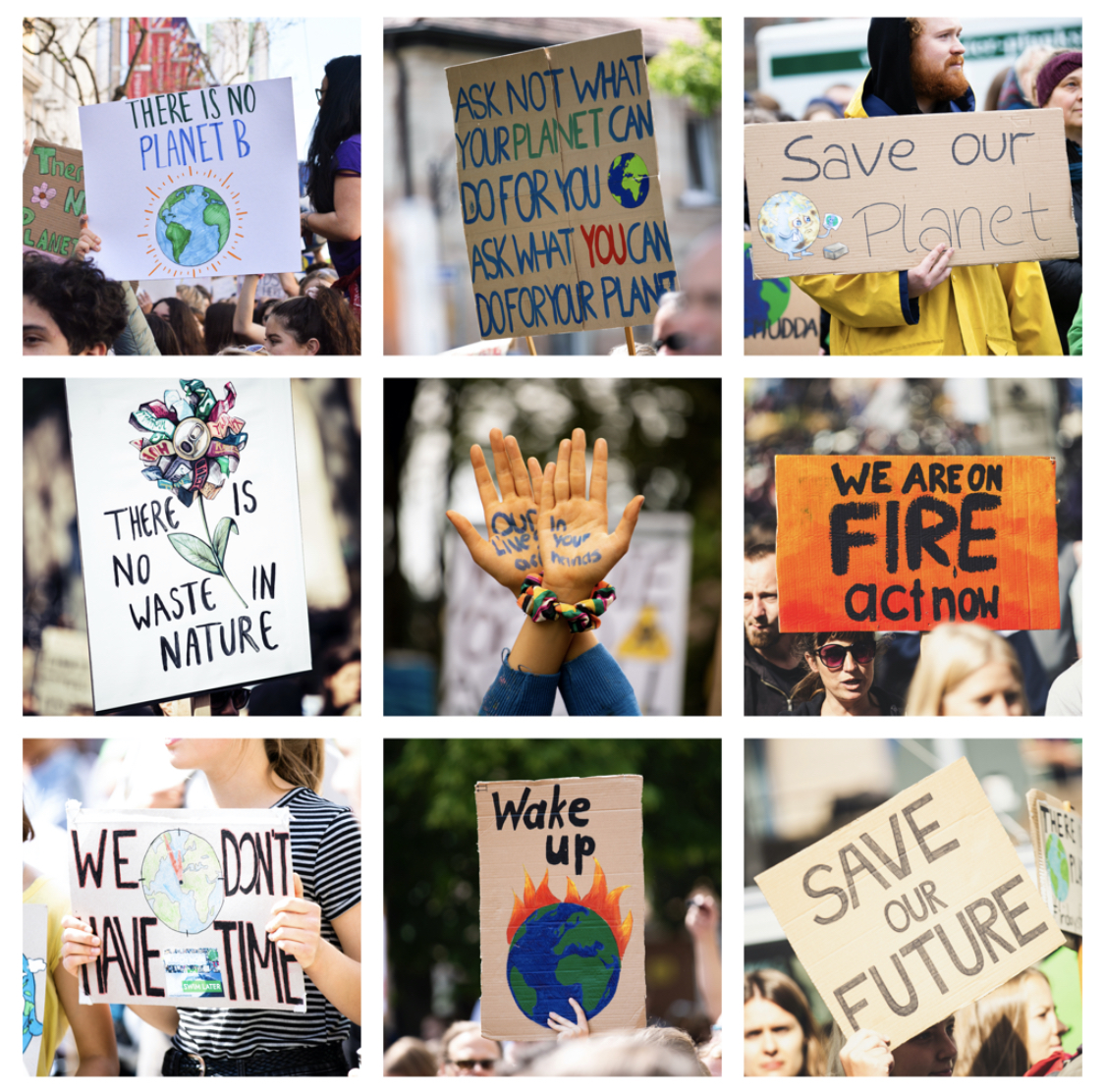 The Sierra Club pushes for societal changes and voices the current and increasing impacts of climate change.