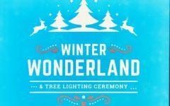 JCSD Winter Wonderland