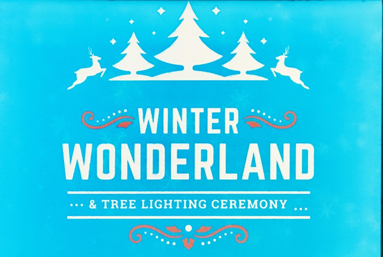 Winter Wonderland at JCSD a fun place for kids.