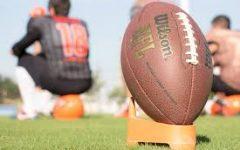 Navigation to Story: The New 2020 NFL Season