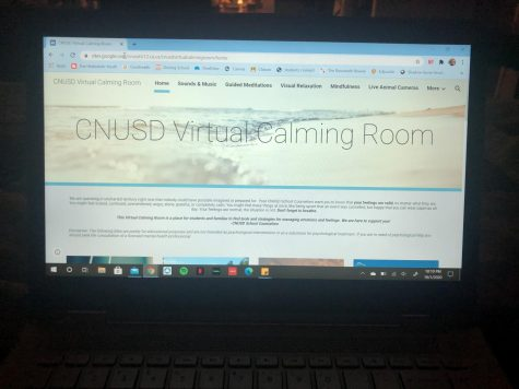 the opening screen of the CNUSD Virtual Calming Room