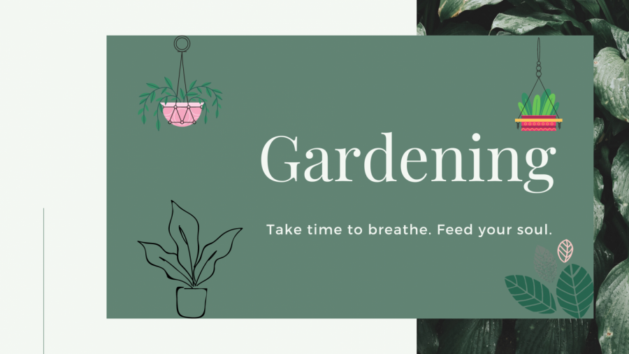 Gardening: Take time to breathe. Feed your soul.  This is much needed especially during this trying times.