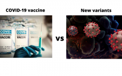 Navigation to Story: COVID-19 Vaccines vs New Variants