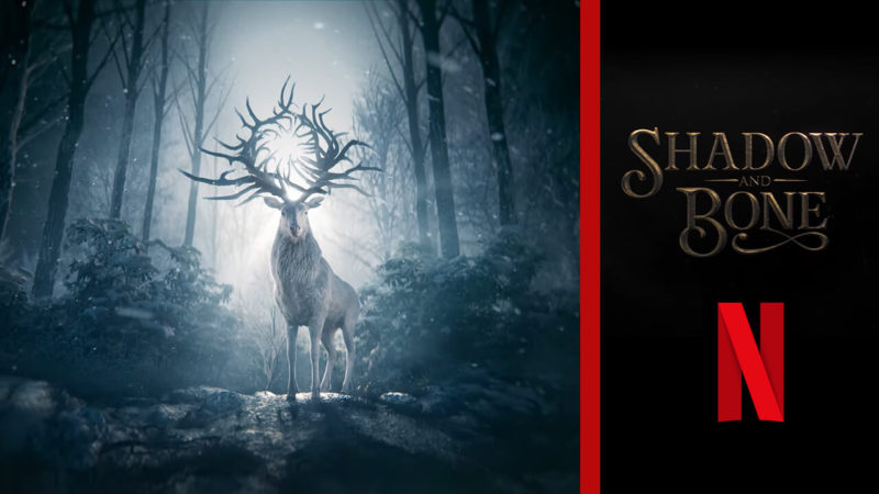 This is the tv show Shadow and Bone out on Netflix