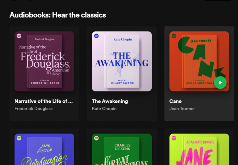 Snapshot of recommended audiobooks in podcast form on Spotify